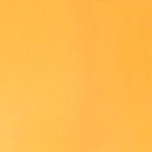 Vibrant Marigold
